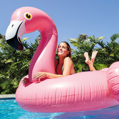 Zwemeiland flamingo